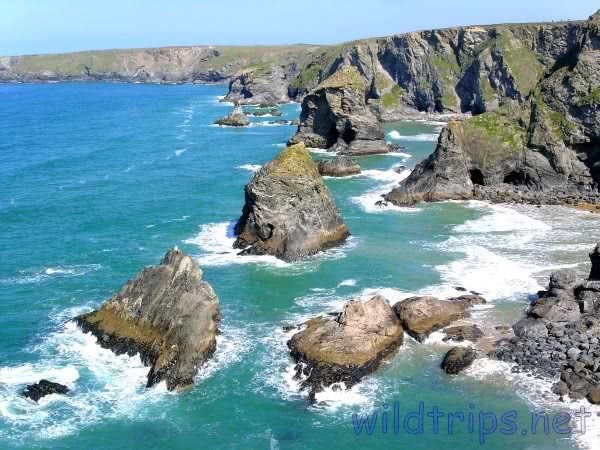Cornwall Bedruthan Steps