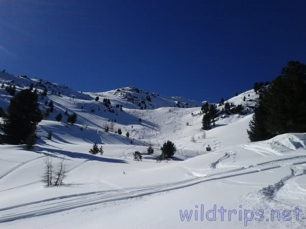 Skiing in fresh snow, Alps